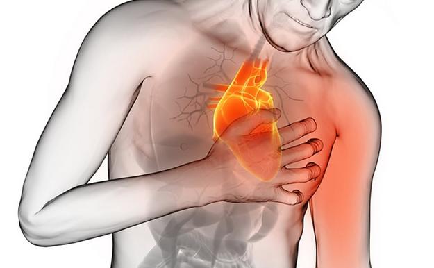 Manger des fruits secs chaque jour diminue le risque de maladie cardio-vasculaire