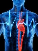 Tout savoir sur l'insuffisance cardiaque
