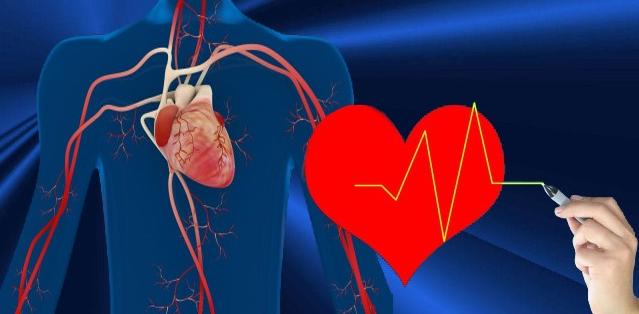 Oxydation des acides gras dans le cœur