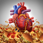 L'alimentation et les maladies cardiovasculaires